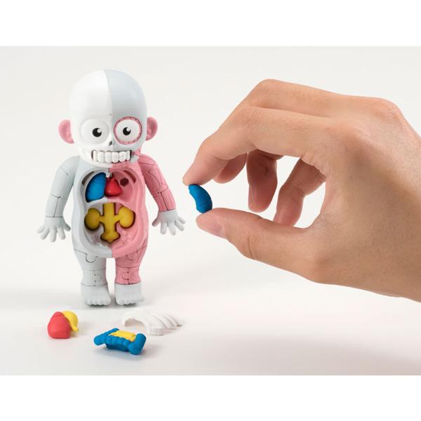放課後の怪談シリーズ 理科室の模型復元パズル 人体模型遊び方