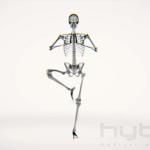 ヨガをしている人体をX線撮影したように表現した動画が人体の神秘を感じる