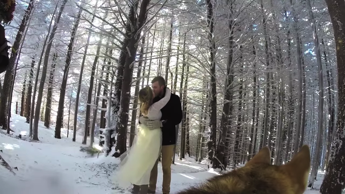 愛犬が撮影した雪山での結婚式