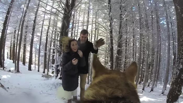 愛犬が撮影した雪山での結婚式2