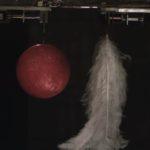 真空状態でボーリングの玉と羽を落としたらどうなる?驚きの実験結果