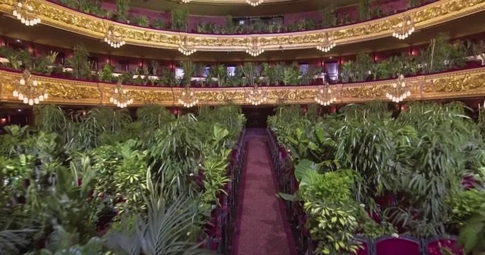 リセウ大劇場、2292本の観葉植物の前で演奏