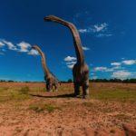 小学1年生の男の子が恐竜図鑑の間違いを発見する、出版社も気付かず